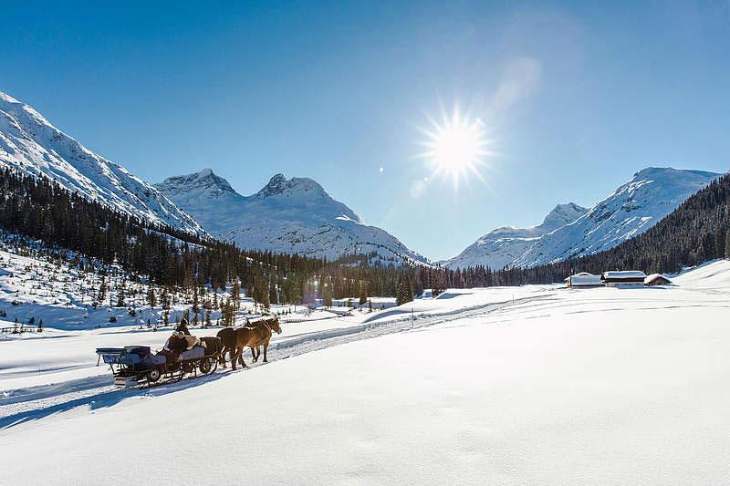 Romantische Wintererlebnisse bei einer Pferdeschlittenfahrt