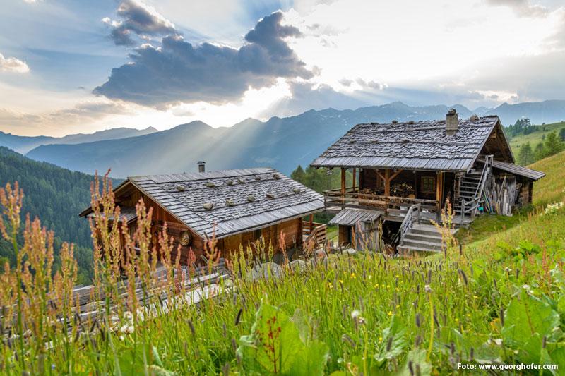 Almlandschaft in Südtirol