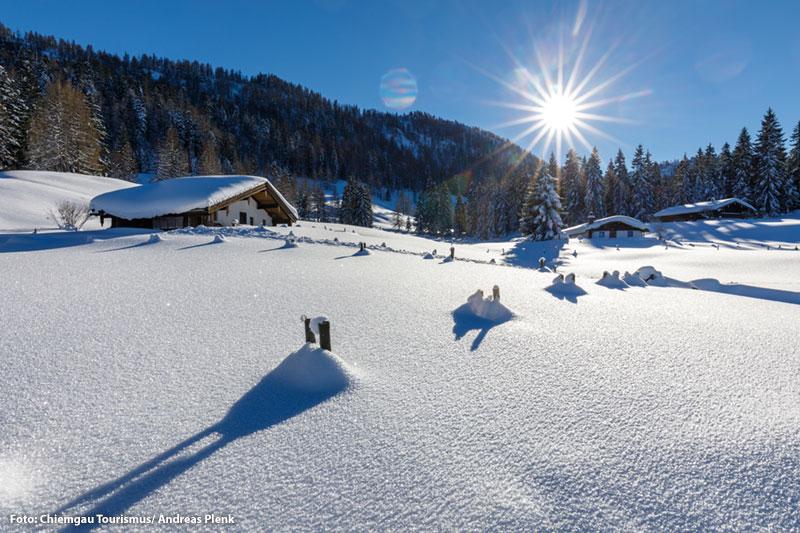 Almlandschaft im Chiemgau (Oberbayern)
