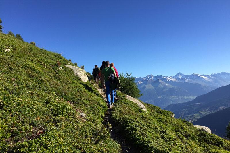 Wandern in der Ferienregion Grächen