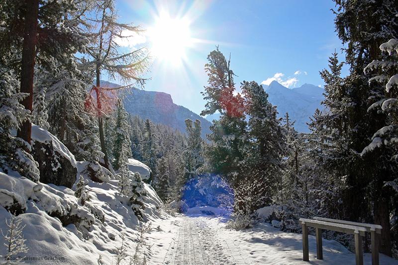 Winterlandschaft Grächen