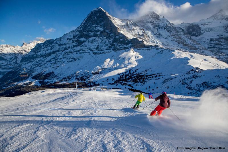 Skiurlaub im Skigebiet Grindelwald-Wengen