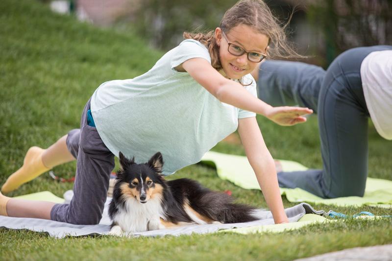 Yoga mit Hund