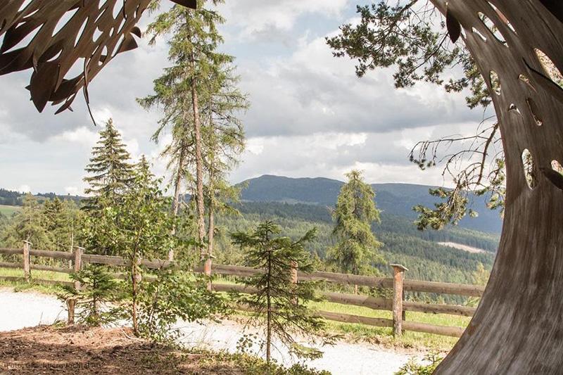 Erlebniswanderwege wie diesen gibt es rund um die Almenregion Gitschberg Jochtal ganz viele
