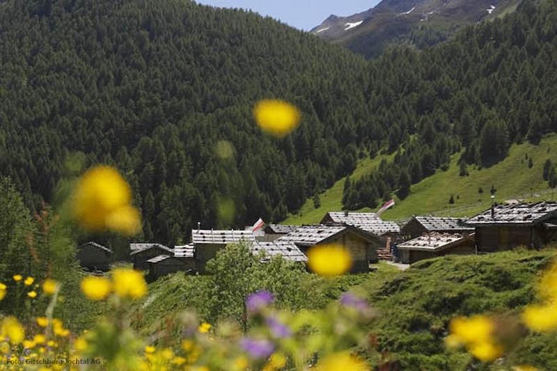Den Sommerurlaub in Südtirol genießt Du u.a. beim Wandern durch das einzigartig malerische Almdorf Fane Alm in der Almenregion Gitschberg Jochtal