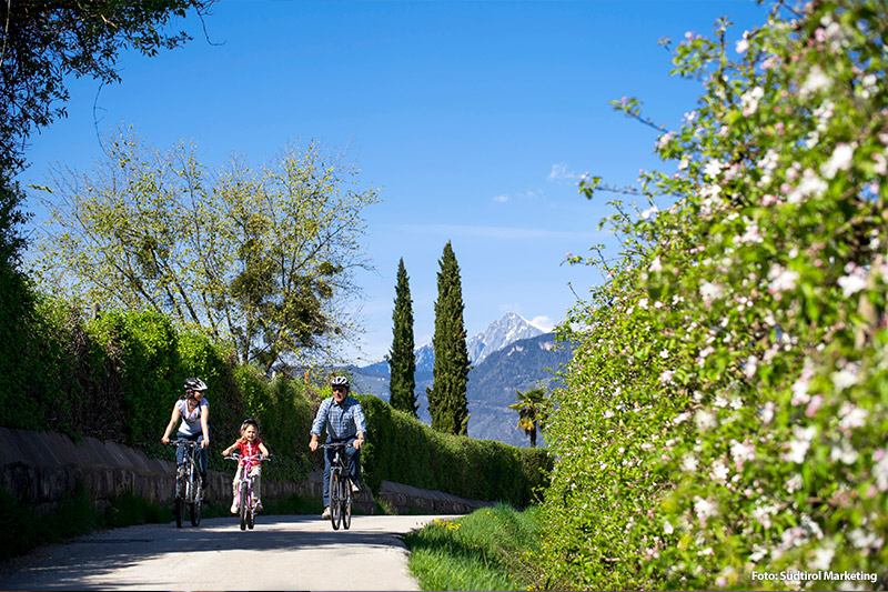 Radfahren in Südtirol