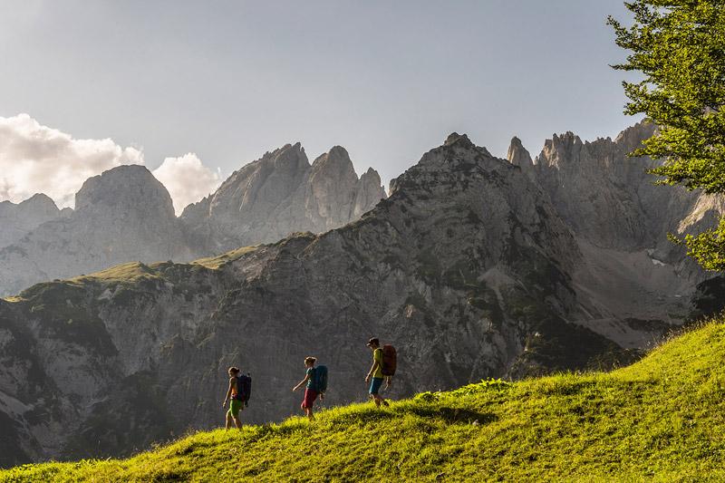 Erkunde fantastische Naturlandschaften in den Kitzbüheler Alpen