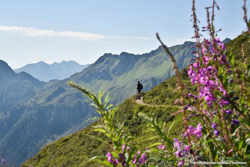 Inmitten der Kitzbüheler Alpen, dem Rofangebirge und den Brandenberger Alpen wandern