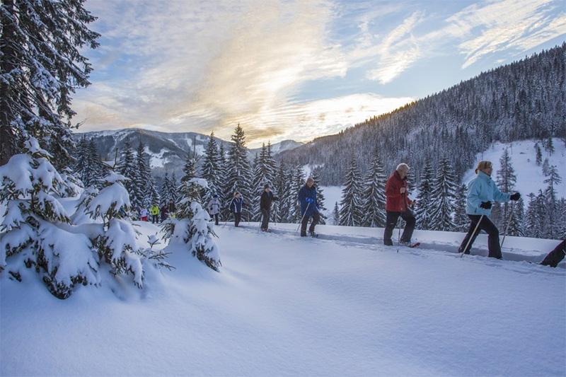Geführte Schneeschuhwanderung in Filzmoos