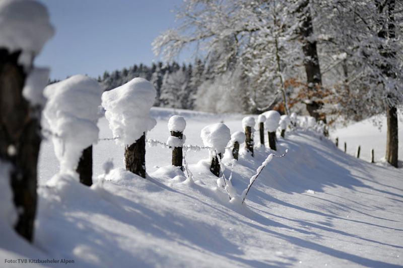 Verschneite Landschaft in den Kitzbüheler Alpen