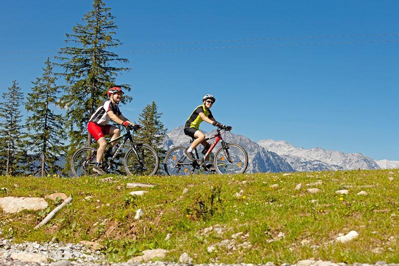Mountainbike fahren und die Aussicht genießen