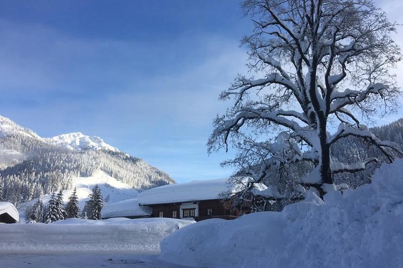 Verschiedene Winteraktivitäten: Skifahren, Rodeln, Winterwandern, Eislaufen