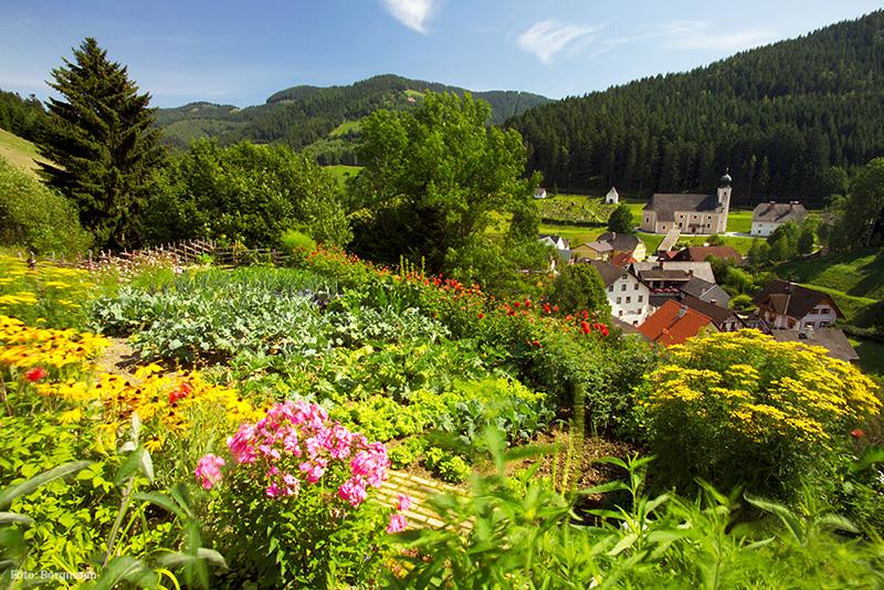 Blumenmeer in Gasen