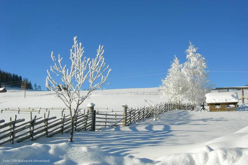 Winterlandschaft mit Bänderzaun im Almenland