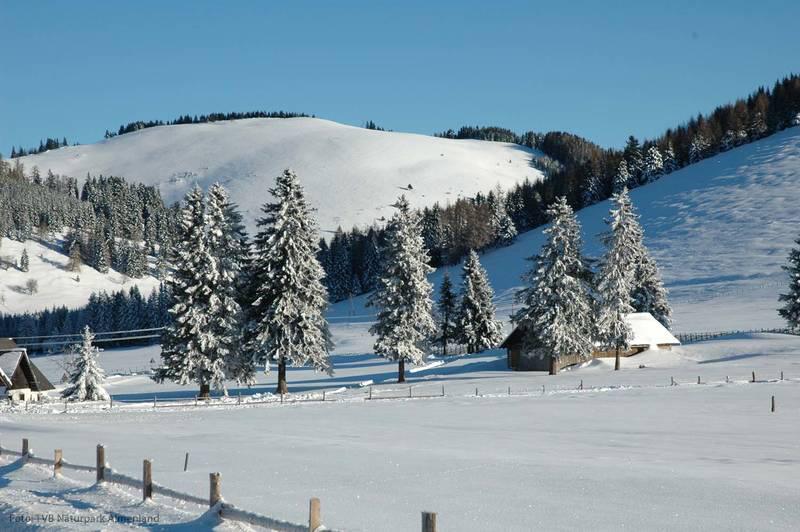 Winterlandschaft Naturpark Almenland
