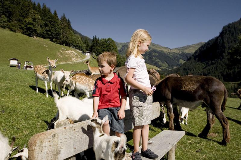 Jeden Tag ein Abenteuer mit der Familie - das Pillerseetal ist ideal für Familienurlaub in Tirol