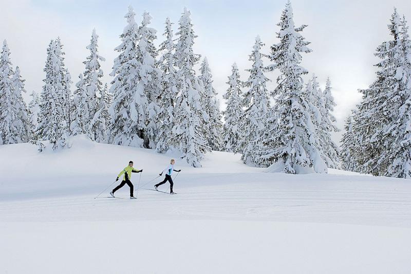 Langlaufen zählt auch zu den Top-Wintersportarten. Im Pillerseetal ist es neben dem Skifahren der beliebteste Wintersport!