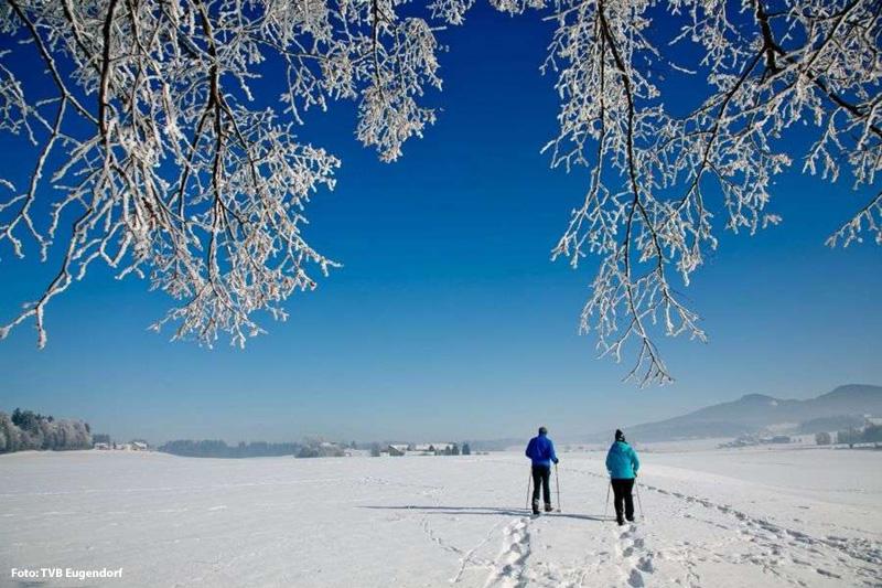 Schneeschuhwandern und die Natur grenzenlos genießen