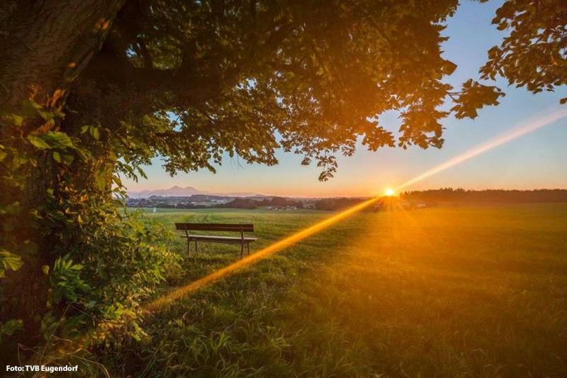Den schönen Sonnenuntergang mit erleben