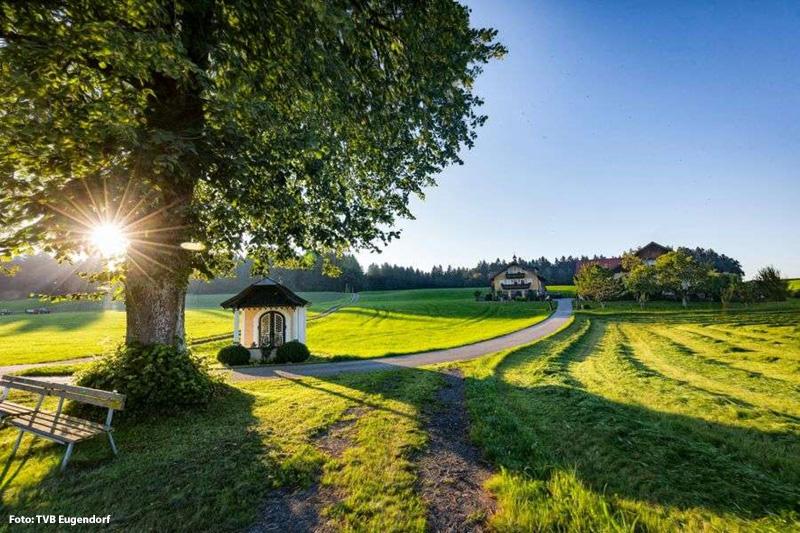 In der schönen Landschaft eine Runde spazieren - so fängt der Tag schon direkt schön an