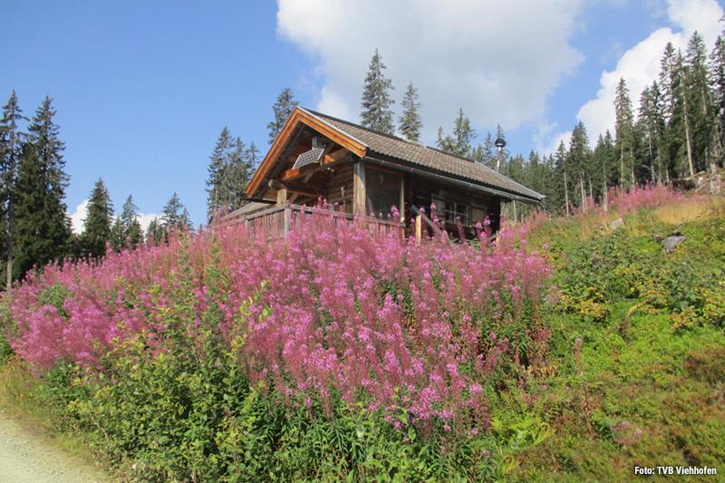 WANDER-PARADIES von gemütlichen Spazierwegen bis zur fordernden Bergtour: Wanderer können sich rund um Viehhofen austoben!