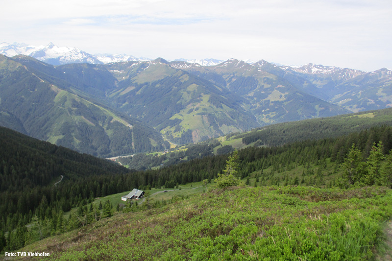 Unzählige Highlights der Region, wie die Hochgebirgsstauseen in Kaprun, die Grossglockner Hochalpenstraße, der Gletscher am Kitzsteinhorn oder die Krimmler Wasserfälle.