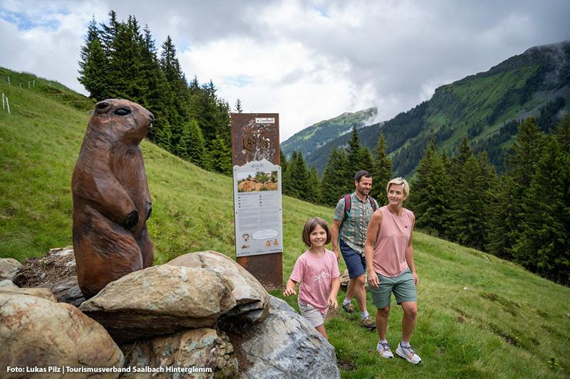 Highlight im Talschluss in Saalbach: Der WILDLIFE TRAIL - auf geht's zur Erkundungstour