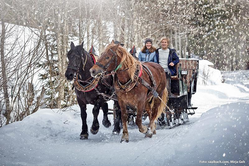 Für alle Romantiker: Pferdekutschfahrten! Darauf freut sich JEDER! Strahlen in den Augen vorprogrammiert