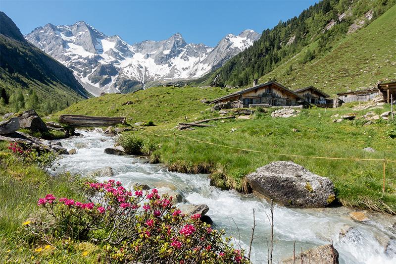 Ein Urlaub für Romantiker mit Wanderungen durch Almrosenteppiche und Zirbenbestände zu verborgenen Seen und Berghütten
