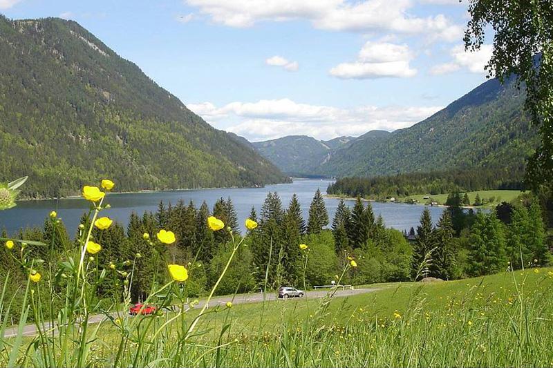 Unverbaute Panorama-Alleinlage oberhalb des Weissensees