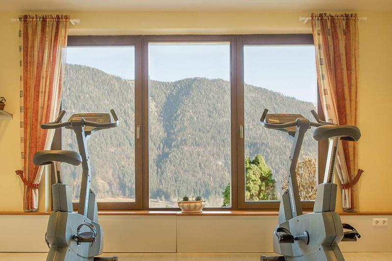 Im Fitnessbereich hast Du ebenfalls einen Panoramablick auf die Gailtaler Alpen und den Weissensee