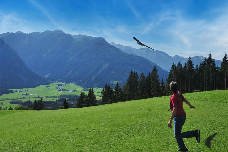 Modell und Hangfliegen im Antlitz der Hohen Tauern auf dem Modell-Hangflugplatz Alpengasthof Stockenbaum in Neukirchen