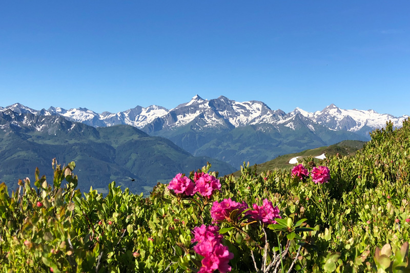 Lass Dich beim Wandern von der atemberaubenden Bergwelt hinreissen
