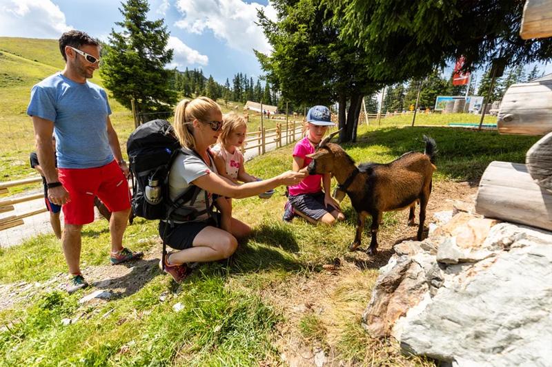 Familiensommer in Tirol